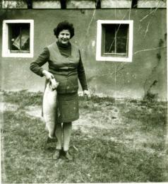 Балканска пъстърва, уловена на яз.Доспат, 1975г. тегло 9.300кг.